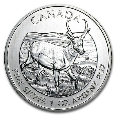 $ CDN238 • Buy 2013 Pronghorn Antelope 1 Oz. 9999 Pure Silver Coins (lot Of 5 Coins)