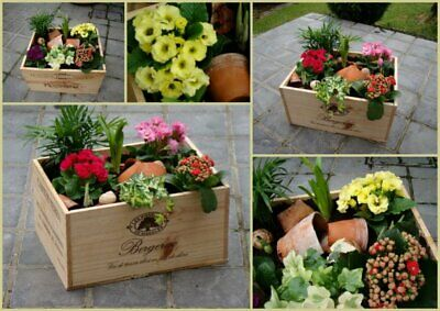 Wooden Wine Box Crate. Ideal Garden Planters. French. Various Sizes (EMPTY) • 13.95£