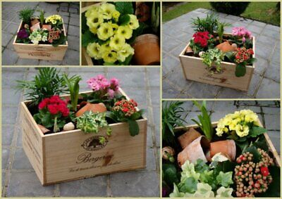 £13.95 • Buy Wooden Wine Box Crate. Ideal Garden Planters. Genuine French. Various Sizes
