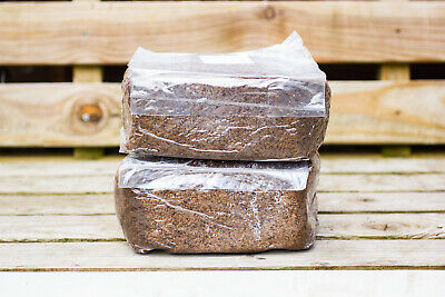4lb 1.8kg MASTERS MIX Supplemented Hardwood Sawdust Sterile Substrate • 12£