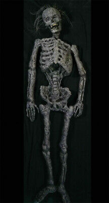 $199.99 • Buy Life Size Rot Corpse Skeleton Halloween Prop Haunted House Decoration Outdoor