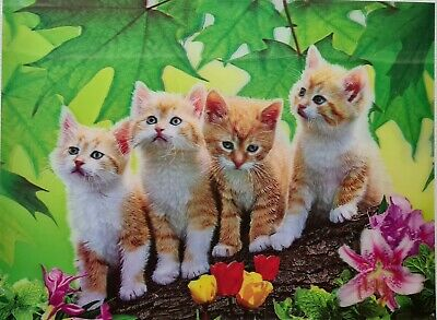 AU17.99 • Buy 3D Holographic Lenticular Artwork Hologram  396x297 Poster Cats Picture