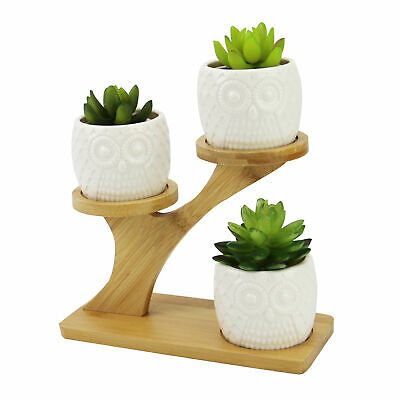 Owl Pots With Stand Ceramic Plant Pot With Bamboo Stand No Plants Included M&W • 12.49£