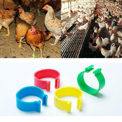 100pcs Numbered Spiral Chicken Leg Ring Identification Rings Poultry Mark Clip • 4.50£