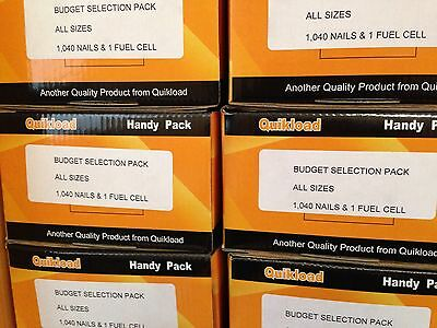 1 Budget Selection Pack For Paslode Im350/5 Types Of Nails No Gas 24h Delivery • 16.50£