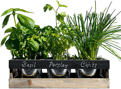 Indoor Herb Garden Kit - Kitchen Wooden Windowsill Planter Box • 23.90£