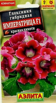 £1.41 • Buy Gloxinia Hybrid  Empress   Red With White Edge. High Quality