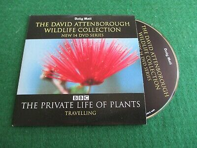 DAVID ATTENBOROUGH WILDLIFE - THE PRIVATE LIFE OF PLANTS - TRAVELLING Promo Dvd  • 1.25£