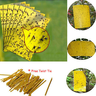 AU14.99 • Buy Up 50x Yellow Sticky Insect Killer Whitefly Thrip Fruit Fly Gnat Leafminer Trap