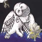 £14.66 • Buy The Magnolia Electric Co. CD (2003) Value Guaranteed From EBay's Biggest Seller!