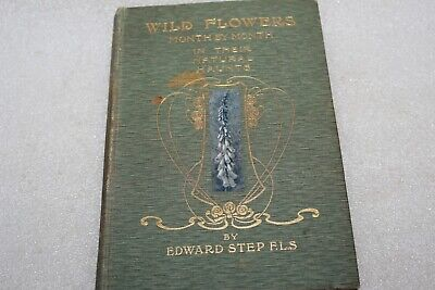Edward Step Wild Flowers Month By Month In Their Natural Haunts Vol 1 1906 Book • 3.99£