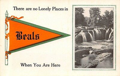 $4.90 • Buy  No Lonely Places  In Beals Maine~Waterfalls~1913 Pennant Postcard