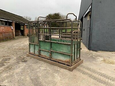 Tubar - Used Cattle Crush In Working Order • 600£