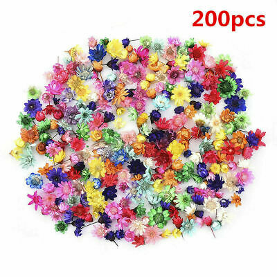 AU10.99 • Buy 200Pcs Real Dried Flowers For DIY Art Crafts Epoxy Resin Candle Making Jewellery