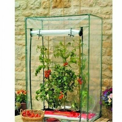 Greenhouse Cold Frame Walk In Cloche Tomato House Garden Outdoor Plant Growing  • 22.99£