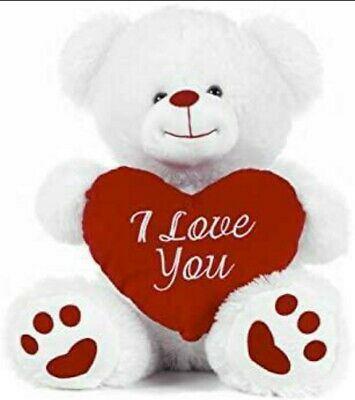 20cm White Teddy Bear Holding Red Heart With  I Love You  Written On It. • 14.99£