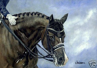 £20 • Buy Giclée Print Of A Horse's Head (Valegro Dressage) Painting By Sophie Lyra Nixon
