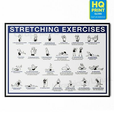 £3.99 • Buy Stretching Workout Pain Relief Chart Exercise Muscle Poster | A5 A4 A3 A2 A1 |