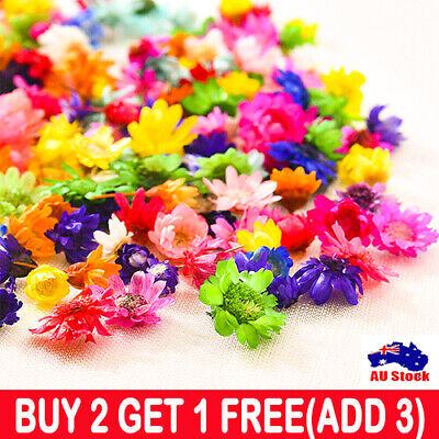 AU9.88 • Buy 200x Real Dried Flowers For DIY Craft Epoxy Resin Jewellery Soap Candle Making!