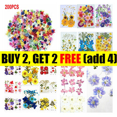AU11.39 • Buy Real Dried Flowers Pressed Leaves For Epoxy Resin Jewelry Making DIY AU