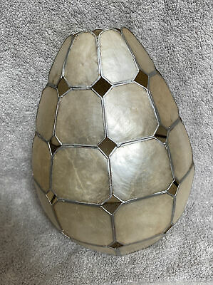 £10 • Buy Capiz Shell Cylinder Ceiling Light Shade Pearlescent Champagne/Silver 25.5cm