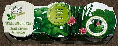 £4.99 • Buy Grow Your Own, Set Of 3 Indoor Herb Pots, Basil, Chives & Parsley *bn*