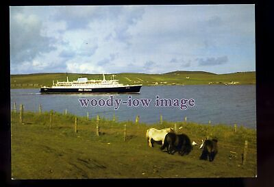 £1.75 • Buy FE3381 - P&O Ferries Ferry - St Clair , Built 1965 Ex S F Panther - Postcard