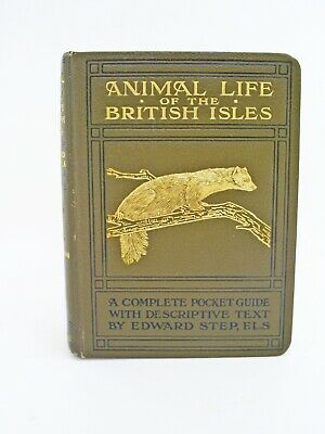 £19.99 • Buy 1921 1st Edition Animal Life Of The British Isles Pocket Guide By Edward Step