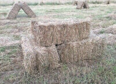 £4 • Buy Small Hay Bales Freshly Cut Collection Only £4 Per Bale Cut And Bailed This Week