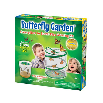 £28.99 • Buy Insect Lore Kids Live Butterfly Garden Hatching Kit- Grows 5 Caterpillars New