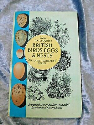 £4.99 • Buy HOW TO RECOGNISE BIRD EGGS VINTAGE BOOK The Young Naturalist Series E. POCHIN
