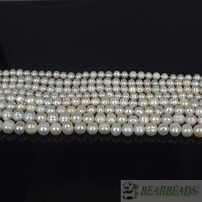 $ CDN6.44 • Buy Natural Freshwater White Pearl Round Beads 4mm 6mm 8mm 9mm 10mm 11mm 12mm 15''