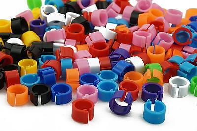 £5.99 • Buy Bird Rings Colorful Leg Bands For Pigeon Parrot Finch Canary Hatch Poultry Rings