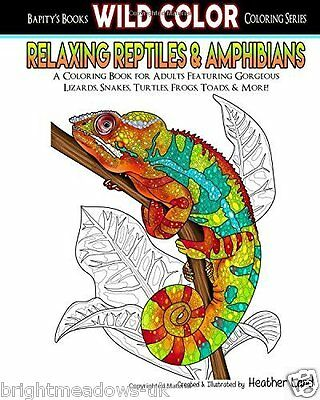 WILD Relaxing Reptiles Animal Adult Colouring Book Lizards Snakes Chameleon Calm • 12.99£