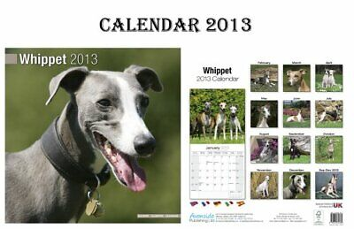 WHIPPET DOGS CALENDAR 2013 + FREE WHIPPET FRIDGE MAGNET Book The Cheap Fast Free • 5.49£
