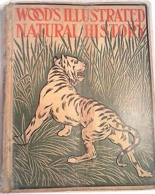£70.62 • Buy WOOD'S ILLUSTRATED NATURAL HISTORY By J. G Wood COPYRIGHT  1897 RARE