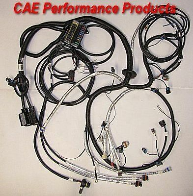 AU1540 • Buy Brand New Ls2 6.0 Litre Engine Loom Conversion Harness Auto Trans 6l80e