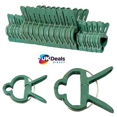 £3.75 • Buy SMALL & LARGE Plastic Garden Plant To Cane Support CLIPS Sprung Spring Ties 20pc