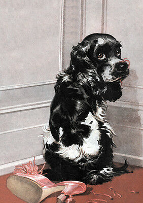 £2.25 • Buy Cocker Spaniel And Chewed Shoe Charming Comic Dog Greetings Note Card