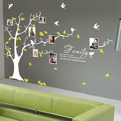 Family Tree Bird Photo Frame Wall Quotes Wall Stickers Wall Art Home Wall Decals • 33.99£