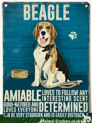 20cm Metal Vintage Style Beagle Lover Gift Breed Character Hanging Sign Plaque • 7.85£