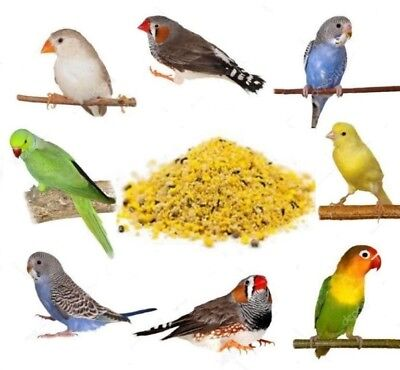 £4.99 • Buy Beaphar Fortified Eggfood Dry Cage Bird Food Feed Seed Canary Finches Budgie