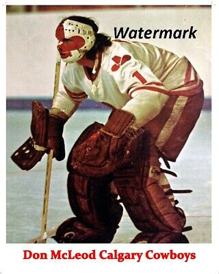 $6.99 • Buy WHA Calgary Cowboys Goalie Don McLeod Game Action Color  8 X 10 Photo Picture