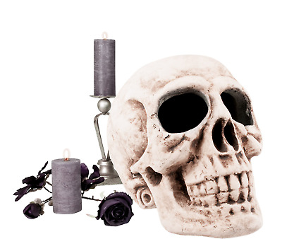 $ CDN82.96 • Buy Huge SKULL DECORATION HEAD Halloween XL Large Giant Prop Lightweight Foam 30CM