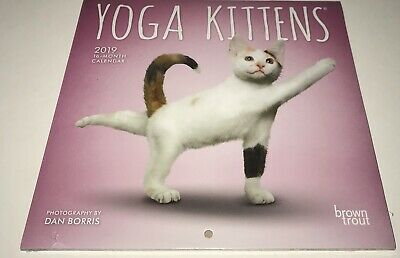 $5.75 • Buy YOGA KITTENS 2019 Mini Wall Calendar By BrownTrout