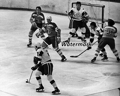 $6.36 • Buy WHA 1974 Quebec Nordiques Vs New England Whalers Game Action 8 X 10 Photo Pic