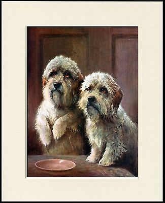 £7.99 • Buy Dandie Dinmont Terrier Dogs Charming Dog Print Mounted Ready To Frame