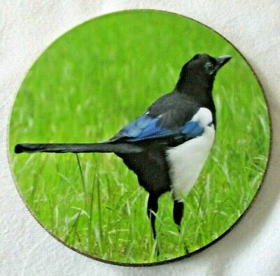 $2.78 • Buy A Feathered Friends Bird Coaster ~ Magpie