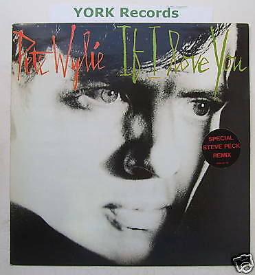 PETE WYLIE - If I Love You - Excellent Con 12  Single • 6.99£