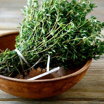 50 THYME SEEDS HERB Free Postage UK STOCK Fast Despatch Grow Ur Own Herb Garden • 3.75£
